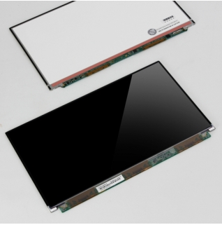 Sony Vaio LCD Display (glossy) VGN-TZ21 11,1